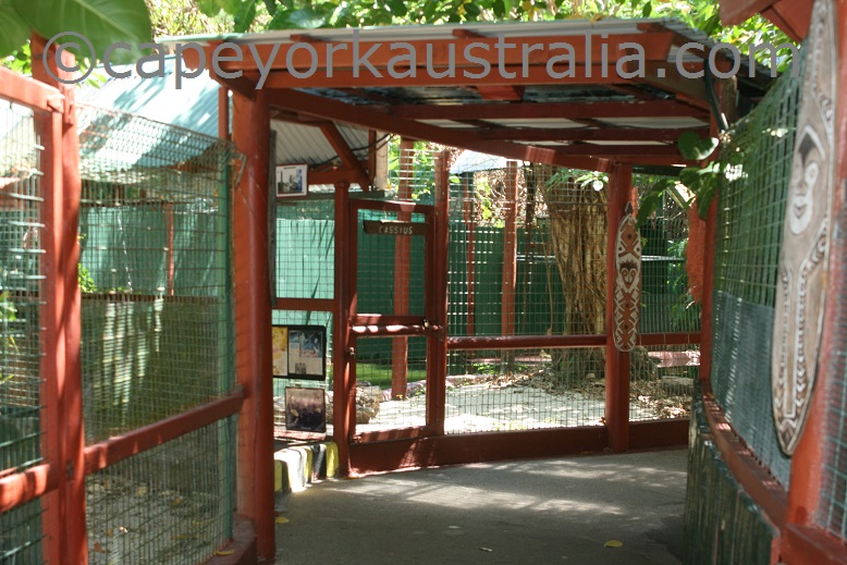 marineland melanesia crocodile cages