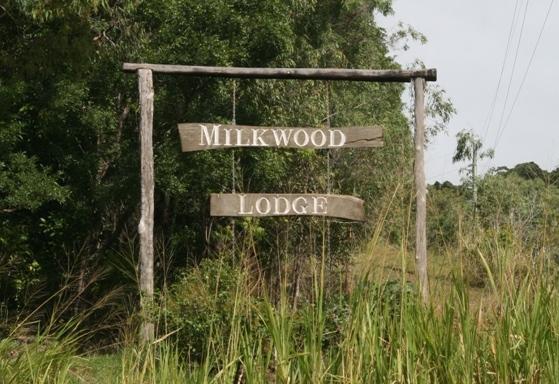 milkwood lodge cooktown