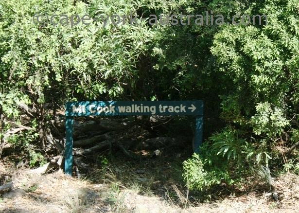 mount cook national park walk