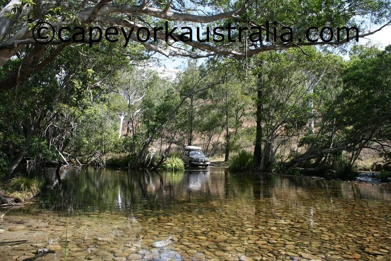mount lewis creek
