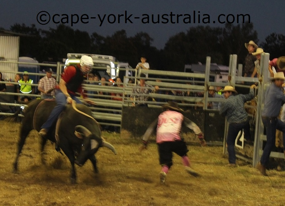 mt carbine rodeo