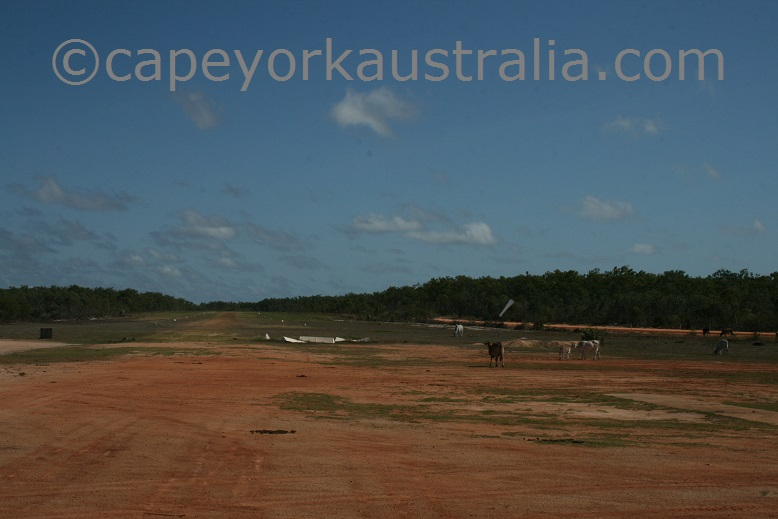 musgrave airfield