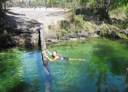 nolans brook swimhole