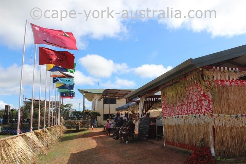 npa cultural festival flags