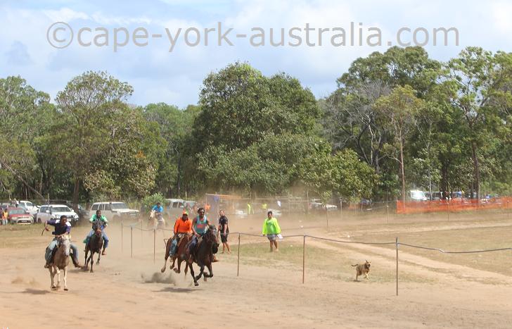 npa show horse races