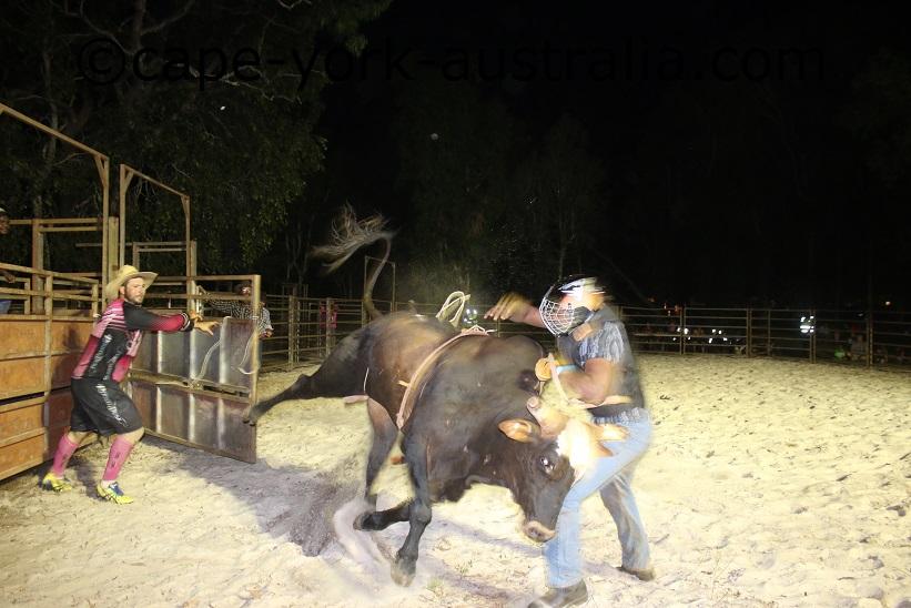 npa show rodeo