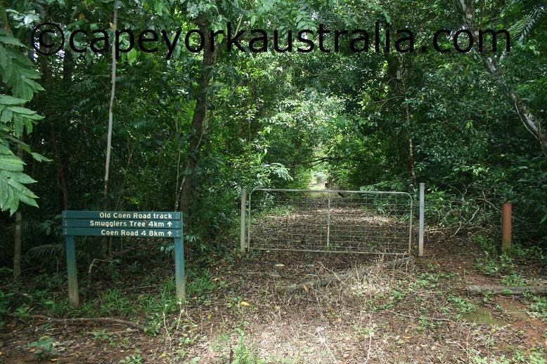 old coen road walking track