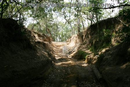old telegraph track