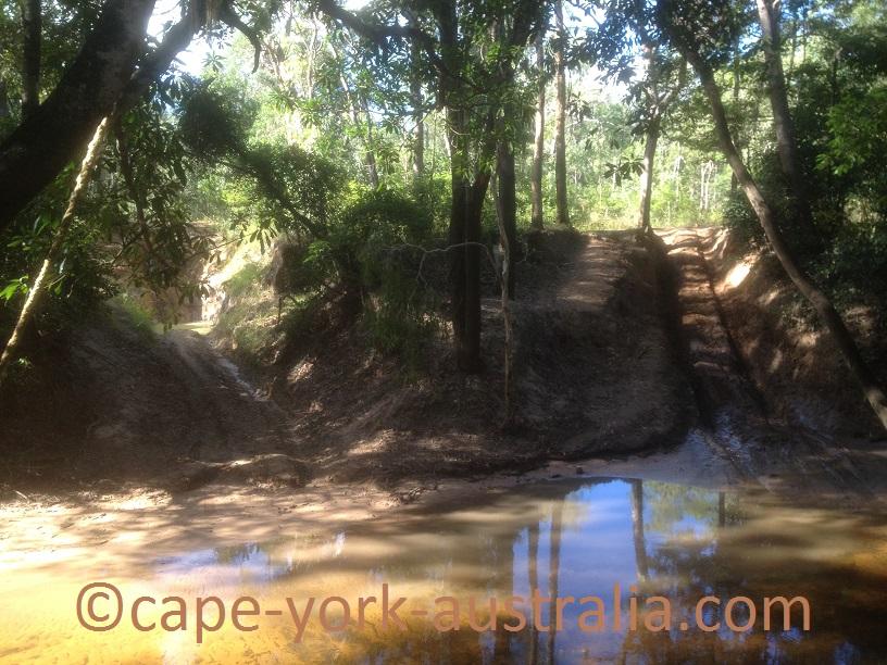 palm creek 2016