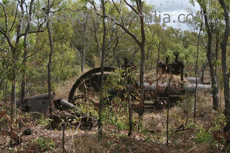 palmer river goldfields queen mill
