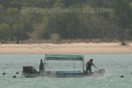 pearling cape york
