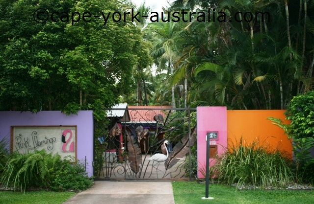 pink flamingo resort port douglas