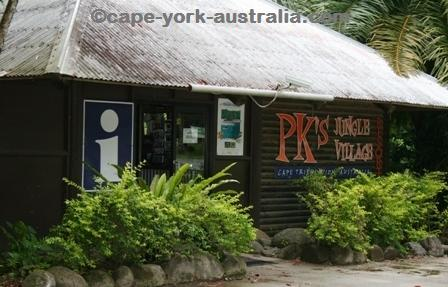 pk jungle village cape tribulation