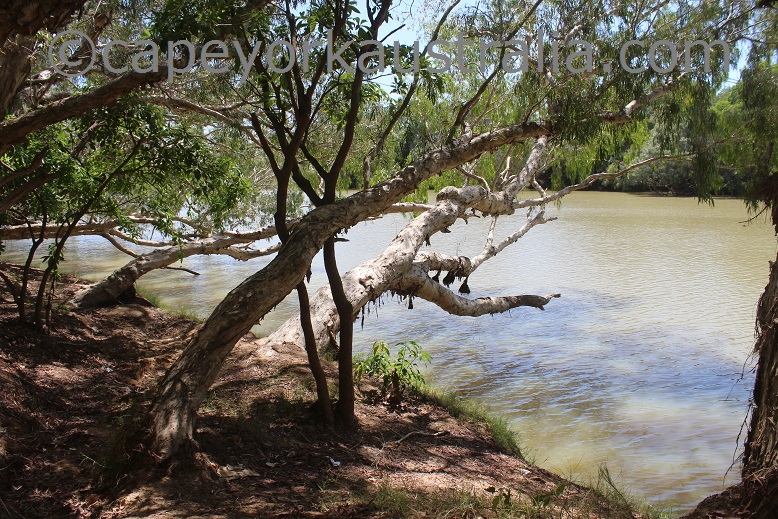 pormpuraaw to kowanyama mitchell river spots