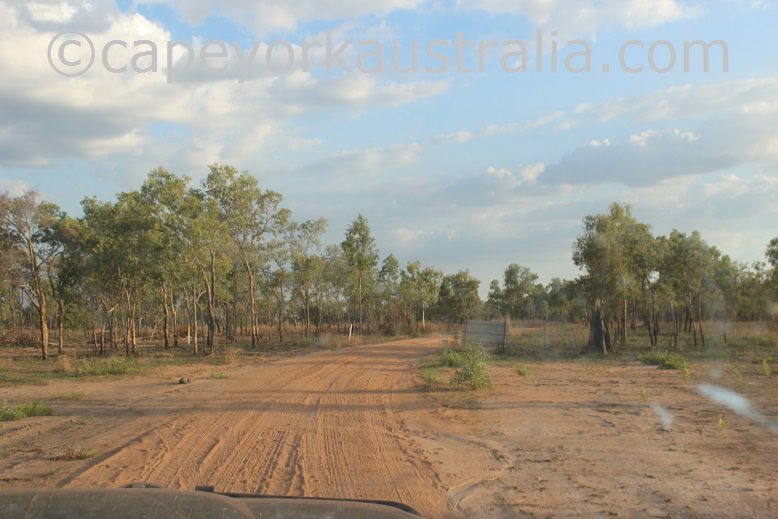 pormpuraaw to kowanyama road narrow