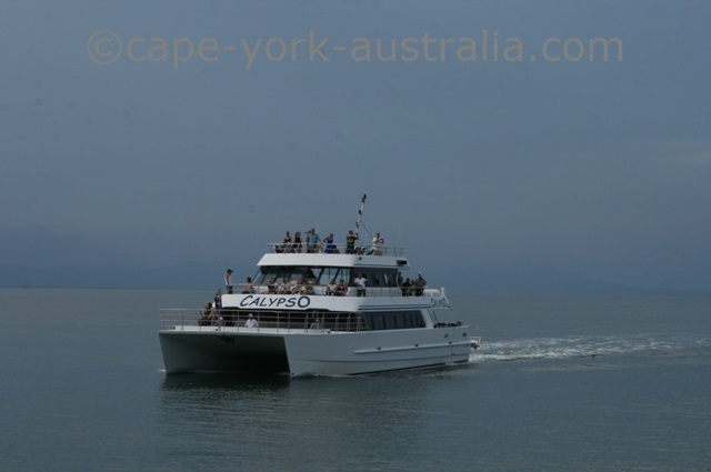 port douglas cruises