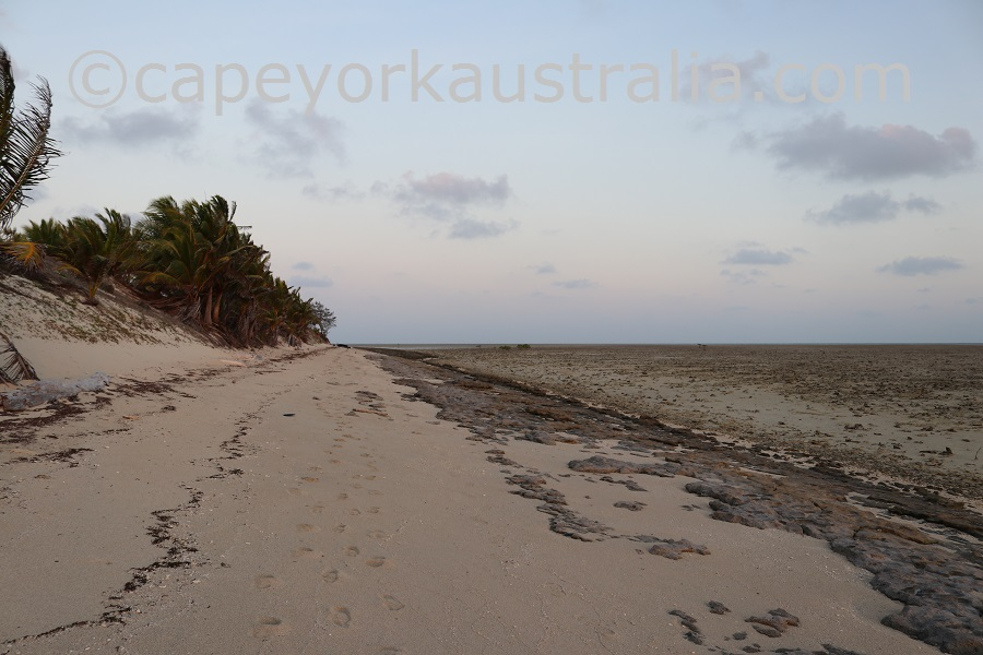 poruma island evening walk southern beach