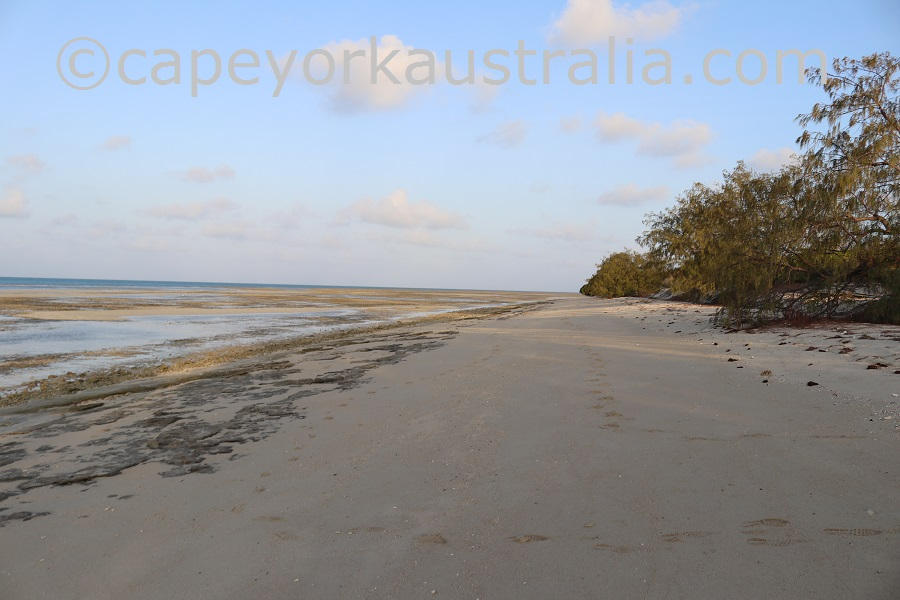 poruma island walk northern beach