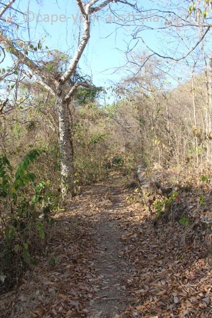 restoration island walking track