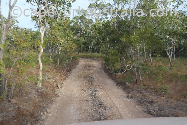 roma flats crocodile creek track