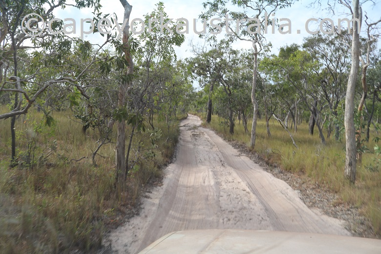 roma flats crocodile creek track sandy