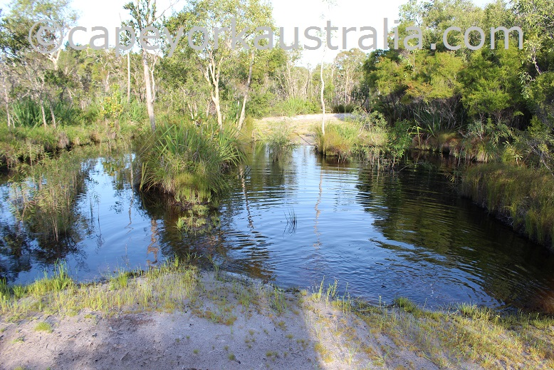 roma flats track second creek wet season