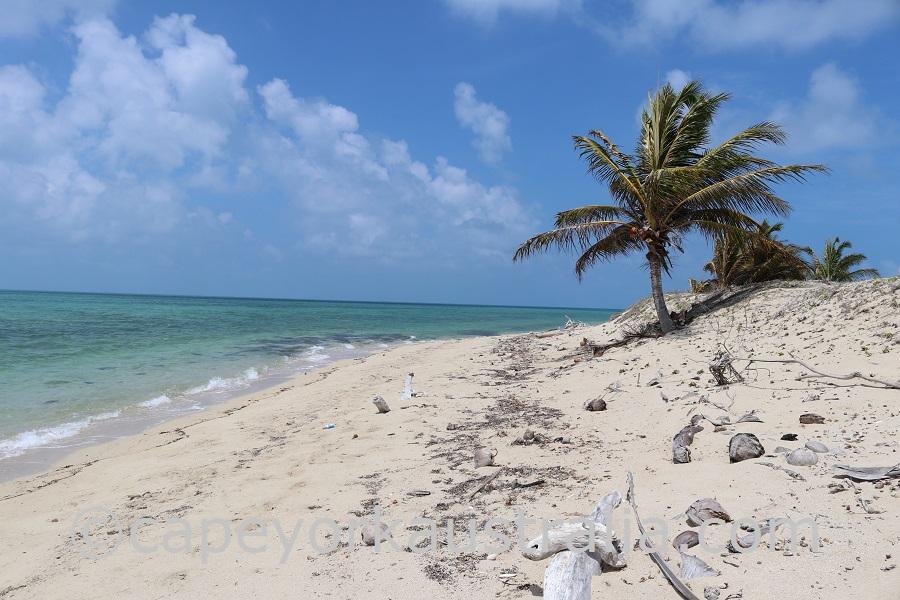 sue island southern beach