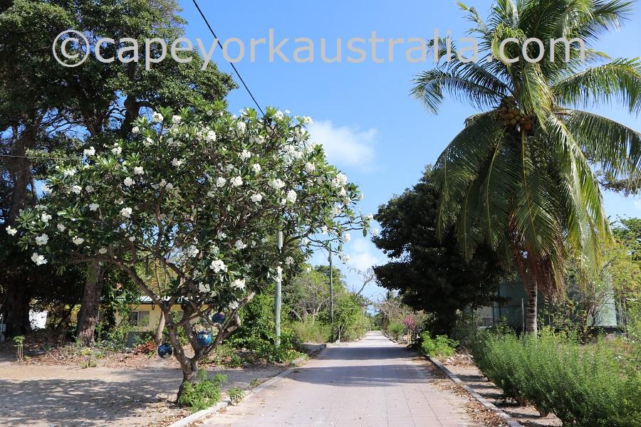 sue island street