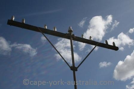 telegraph line coen