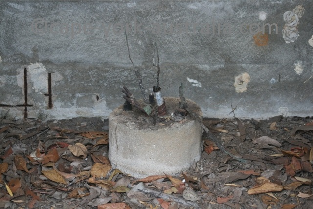 telegraph line junction box