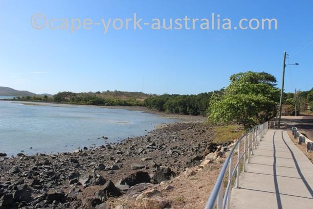 thursday island mangroves