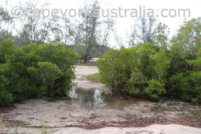 frangipani beach track