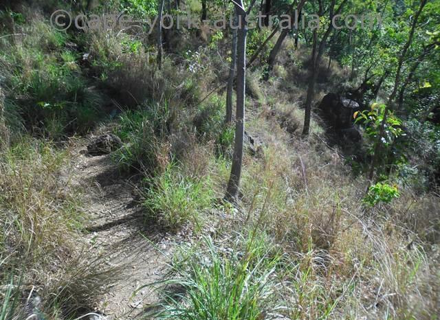 trevethan falls walking track