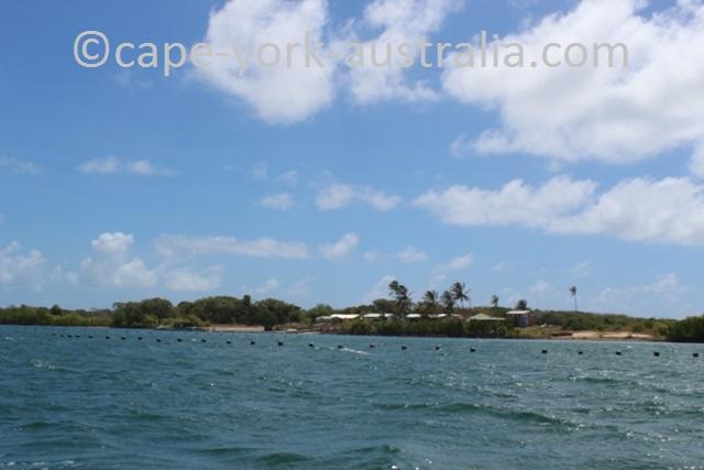 turtle head island pearling