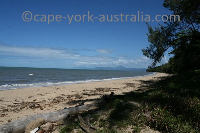 wonga beach daintree