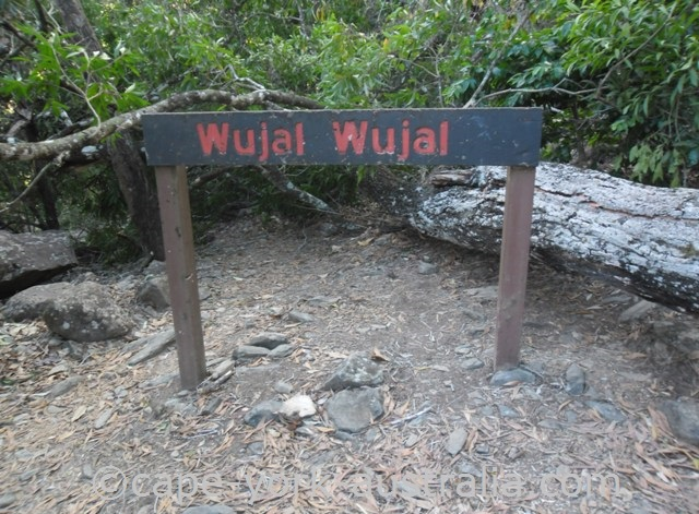 wujal wujal