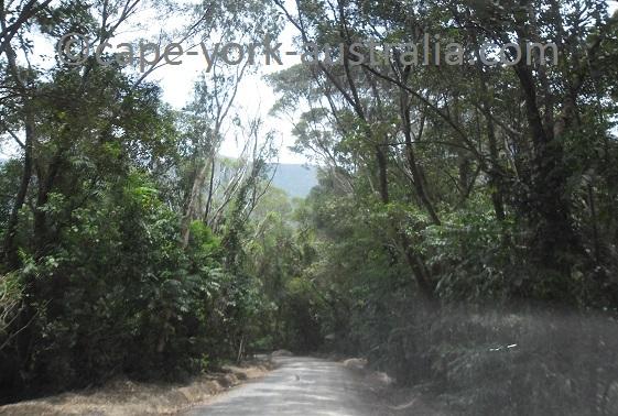 bloomfield road views