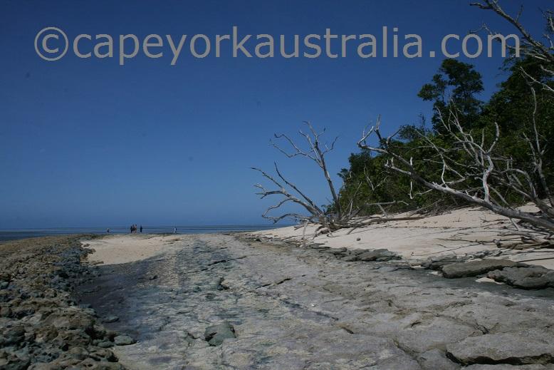 green island walk