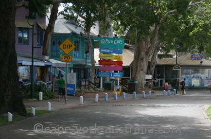 palm cove tourism