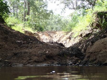 palm creek wet season