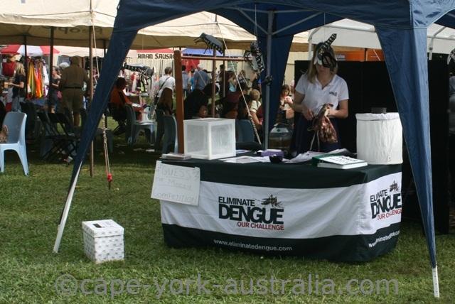 yorkeys knob festival dengue fever display